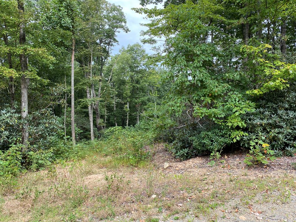 Very nice building lot with a partially-cleared area just waiting for your mountain home.  Seven Springs is a quiet, secluded development with natural scenery all around.  This lot gently slopes and the homesite is almost completely hidden from the road with just driveway access into it and large hardwood trees in front. Just off the Blue Ridge Parkway between Orchard Gap and Groundhog Mountain.  Enjoy the Parkway on your bike or motor cycle, hike the nearby trails, visit the wild ponies at Grayson Highlands State Park, kayak down the New River, visit nearby Mt. Airy, NC and experience Mayberry where it all began.  There are lots of wineries and music venues in the area, too.  Discover the beauty of the Blue Ridge Mountains in the Fancy Gap area.