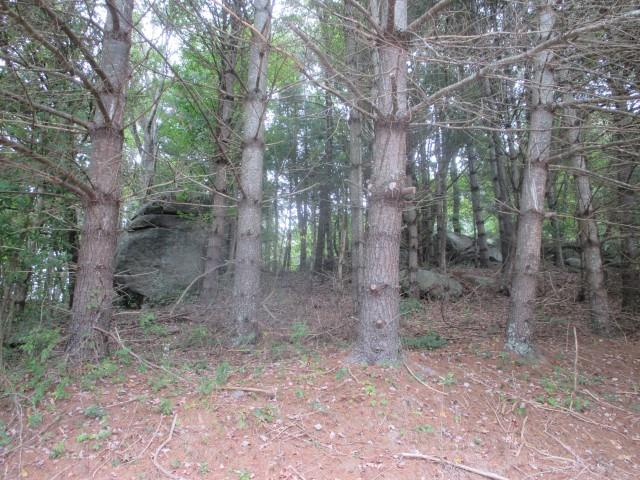 7.633 acres.  Mostly wooded.  Located just 2 miles from Town.  Good place to build your home.  Established subdivision with protective covenants.  Survey.