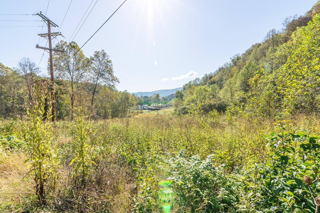 Great for development on the creeper trail. Approx 20 acres with multiple building sites. Bring your blueprints and build your dream home! Show anytime!