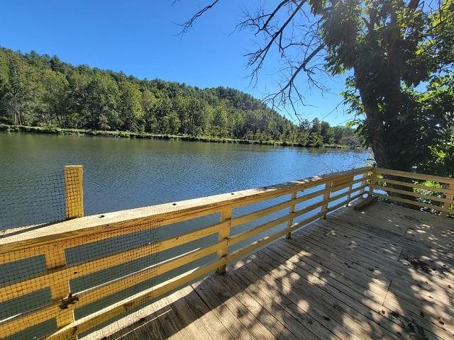 NEW RIVER FRONTAGE!  Looking for that perfect weekend retreat for the entire Family?  This private lot fronting on the New River is it, located just above the Fries Dam and the New River Trail. Over 200'ft of water frontage, 2-campers, large gazebo, deck and floating doc.  There is electric and septic in place.  Great place for large gatherings to cookout, fish, swim and spend the night. Come take a look at what the Blue Ridge Mountains have to offer.