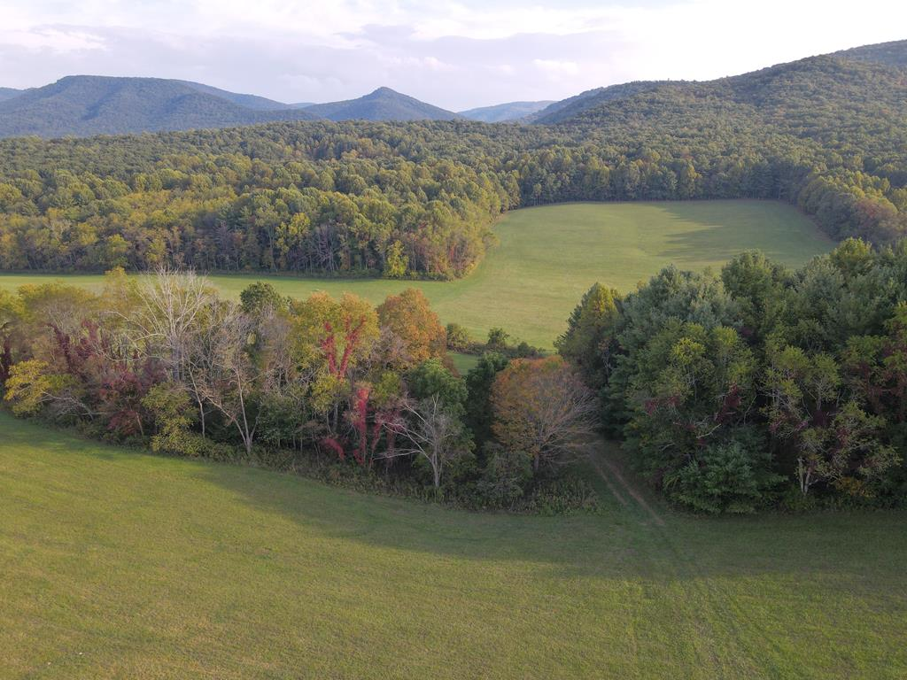 Hunting for a good investment?  You've found it in the mountains of beautiful south west Virginia!  Bordering the Jefferson National Forest, this mountain land lays amazingly well!  There are miles of ATV trails throughout the 350 wooded acres surrounding 80 acres of lush green hay fields.  Taking the driveway in through the well kept fields, through the clean woods & 'round the curve to the tidy, lightly lived in home on the hill, the breathtaking views of the mountains in the distance spread out before you.  It is unbelievable, they will continually enchant you as they change, cycling through all 4 seasons, from lush green to gold, orange & red to bare & quiet.  This unique large tract of usable mtn. land could be crop farmed, hayed, & hunted.  Fence it & graze it.  These two adjoining parcels form a good shape, broad & deep, plenty of privacy and excellent hunting, you can drive to your stands & no vertical tracking!  According to Google Earth highest elevation is about 2800'+/-.