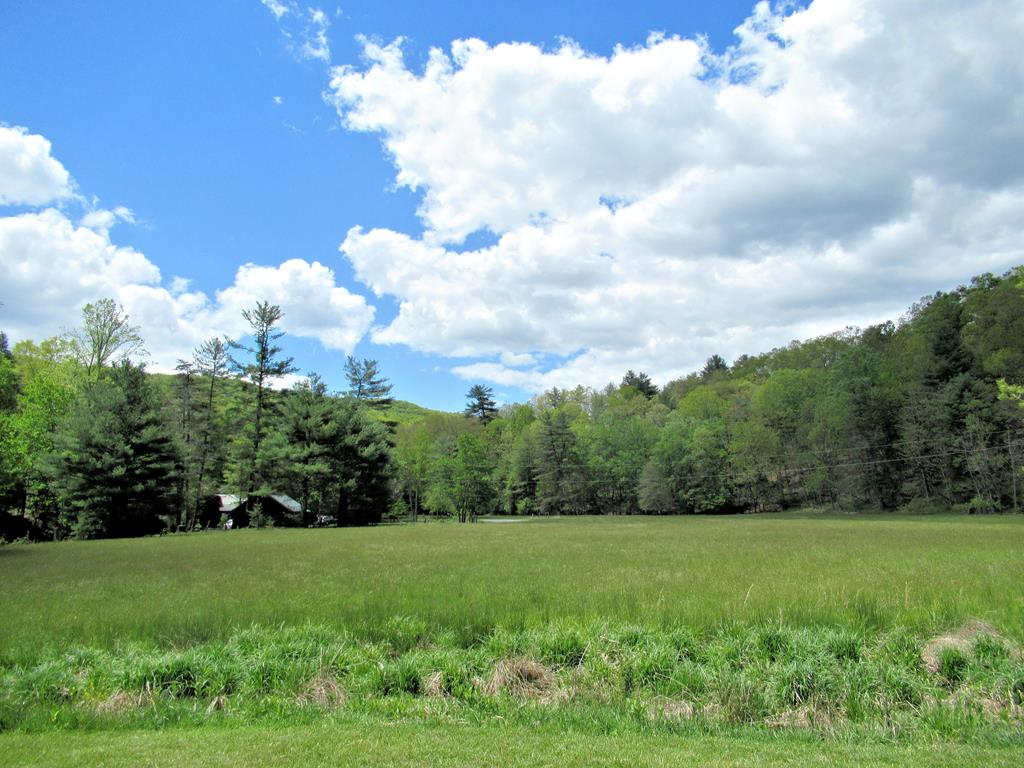 With just over 74 acres and gorgeous mountain views this property borders the Jefferson National Forest. There is a nice stream frontage too! Build your dream home or remodel the current 2BR home on the property. Flat, open pasture/hay field near the road and creek area with a barn with lots of potential for horses, cattle, etc... There is abundant wildlife for hunting, camping, hiking, etc... The house has a gravity fed spring water system that feeds the house without any electricity or pump for possible off the grid living!! Perfect for a weekend get away or a full time residence!