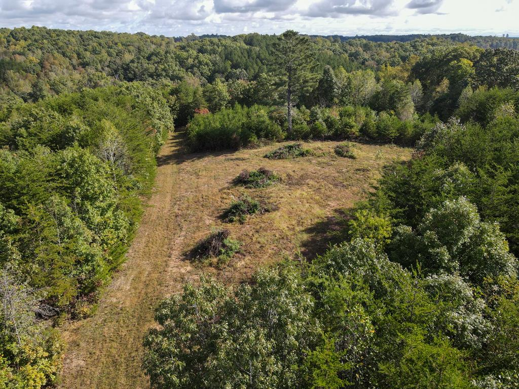 36.9 Ac located in Patrick County, VAand Stokes County, NC. Majority of the land (36.25 Ac  ) located in Patrick County, VA and .07 tenth of Ac located in Stokes County, NC. Approximately 3 ac open and 33.9 wooded. Land is rolling to level to steep. Stream on East and South Boundary of property (Crooked Creek). Good graveled driveway built into the property. Fronts on Paved Road. Access Road is on Beasley Road in Stokes County, Several great building sites in the cleared area. Abundant wildlife - hunting. 10 minutes to Sandy Ridge, NC. 15 minutes to Stuart, VA. 30 minutes to Martinsville, VA. 30 minutes to Mt. Airy, NC. 45 minutes to Winston-Salem, NC. 1 hour to Greensboro, NC.